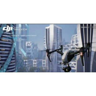 B) Personal ( Ecpress DJI  Drone Training Program with insurance & certificate - 1 day)