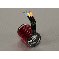 Turnigy Trackstar 1/10 10T 3900KV Brushless