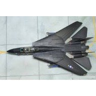 F-14 EDF (kit only)